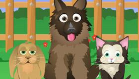 gratuit : Quel animal de compagnie est fait pour toi?