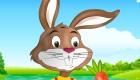 Jeux de fille : Jeu d'habillage de lapin