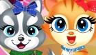 gratuit : Salon de beauté pour animaux de compagnie