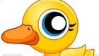 stars : B Duck - 10