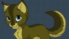gratuit : Jeu de chat en ligne