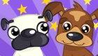gratuit : Concours canin
