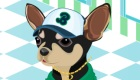 habillage : Jeu de chien en ligne