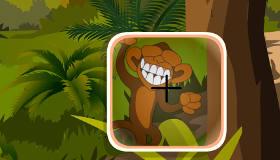 gratuit : La forêt des singes