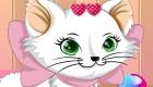 habillage : Habiller un chat