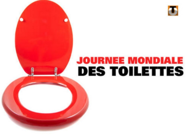 journ 233 e mondiale des toilettes toute l actu jeux 2 filles