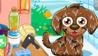 gratuit : S'occuper d'un chien