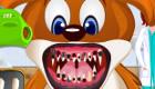 gratuit : Dentistes pour animaux