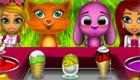 cuisine : Des glaces pour animaux