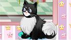 gratuit : Salon de beauté pour chat
