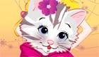 gratuit : Le petit chaton