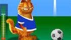 stars : Garfield