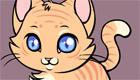 habillage : Jeux de chaton