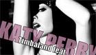 Paroles & vidéos : Timbaland - If We Ever Meet Again ft. Katy Perry