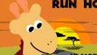 Course de girafe