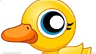 B Duck
