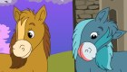 Girly Horse