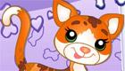 Mimi Mango le chat