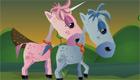 L'équitation pour les filles