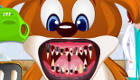 Dentistes pour animaux