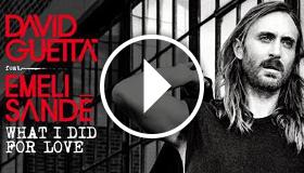 David Guetta ft. Emeli Sande - What I Did For Love