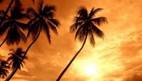 Raconte tes vacances d'été!!!