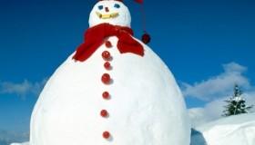 Construis un bonhomme de neige et gagne un code VIP HiDolls!
