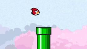 Flappy Bird en colère