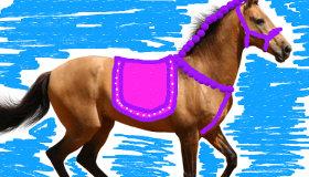 Dessin de chevaux