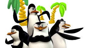 Dessins de pingouins