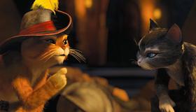 Chats célèbres