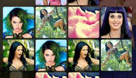 La star Katy Perry