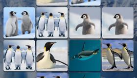 Jeu des pingouins