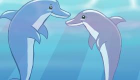 Décoratrice d'intérieur pour dauphins