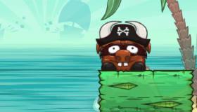 Pirates taureaux