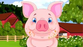 Le bébé cochon star