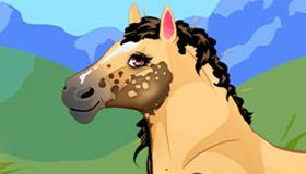 Jeu de relooking mon petit poney