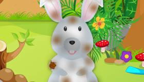 Rencontre le lapin de Pâques