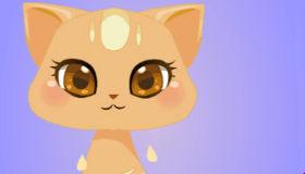 Sauvetage de chatons