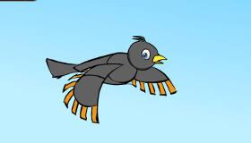 L'oiseau fou de mathématiques