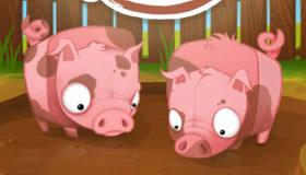 Casse-tête de cochon