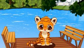 Adopte un Bébé Tigre
