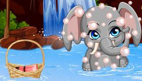Drôle de Bébé éléphant