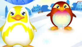 Le parc de pingouins