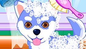 Jeu le salon de toilettage gratuit jeux 2 filles - Jeux de salon de toilettage pour animaux gratuit ...
